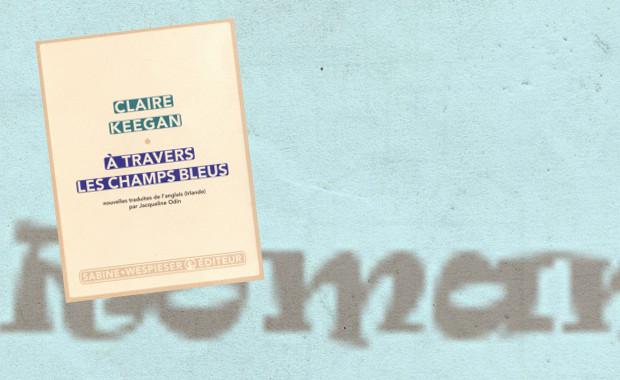 bannière article romanfev 2013